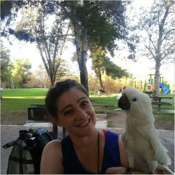 wine parrot