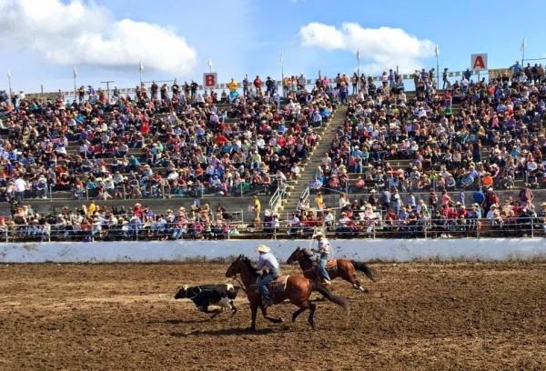 cowboys at Clovis